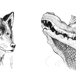 Portrait d'animaux sauvages carnivores à l'encre de chine